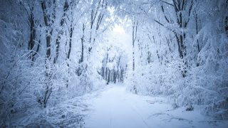 'Winter is coming': Drive buzz, harness trends and capture attention with effective social storytelling